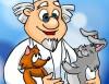 Ветеринарная клиника в поселке Солнечный, Ветеринарные клиники