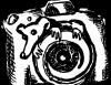 PhotoRat, Фотореклама