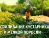 Спиливание деревьев и корчевание пней. , Сад, благоустройство